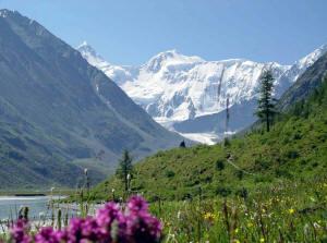 высота горы белуха