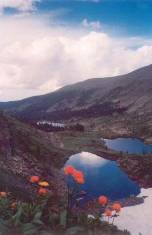 В верховьях реки каракол притока реки